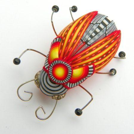 Brož hmyzák pomerančový