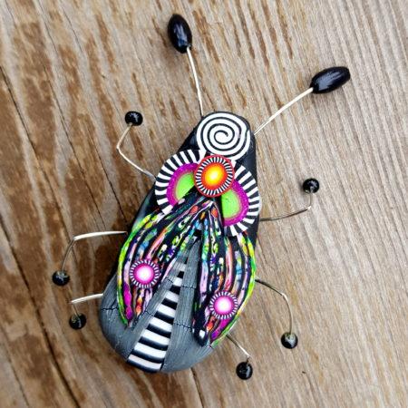 Brož hmyzák pestřenka